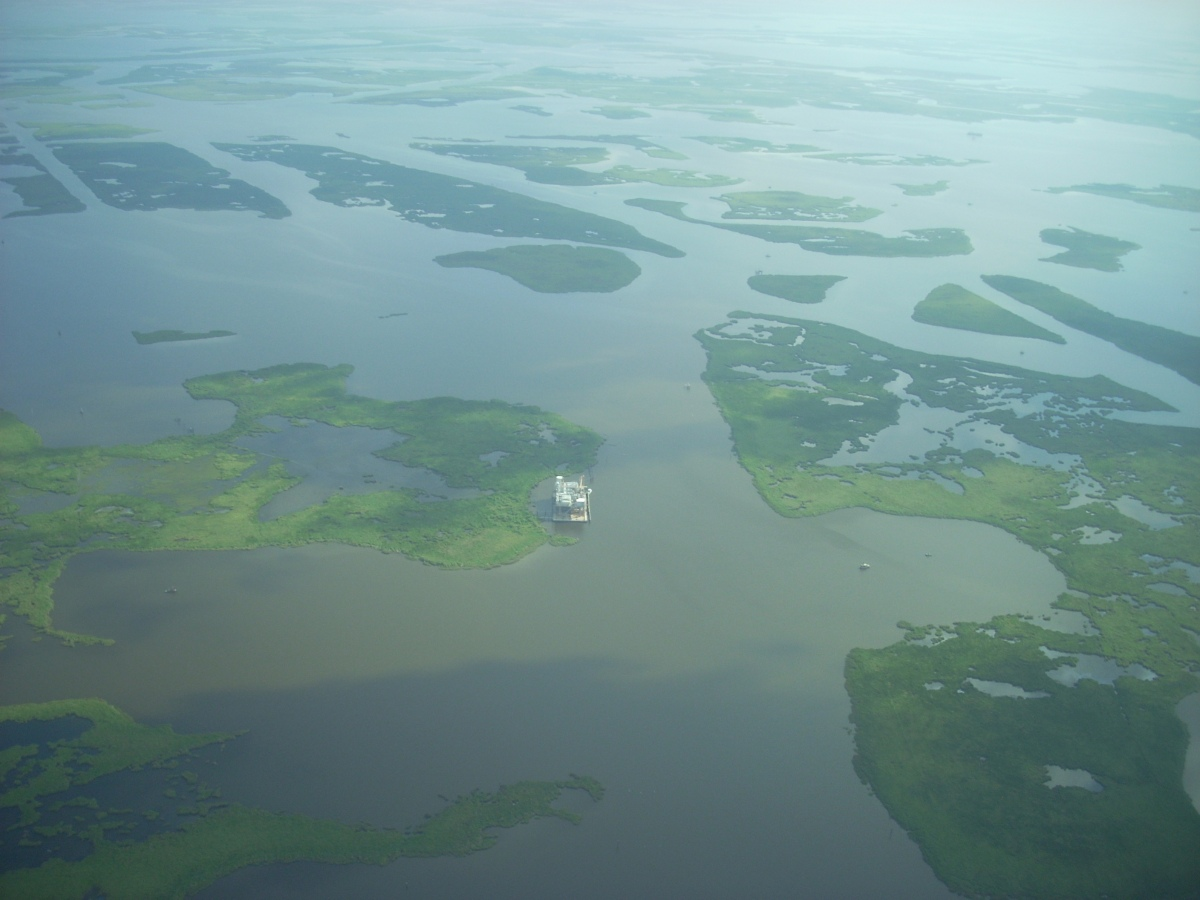 In contrast, the coastal wetlands of the Mississippi Delta, south of New Orleans, are now more water than land because the region has been starved of needed sediments by industrialization. This resource used to provide a natural buffer to storm surges, as well as a nursery for hundreds of marine and avian species.