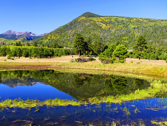 Flagstaff-watershed-protection-project