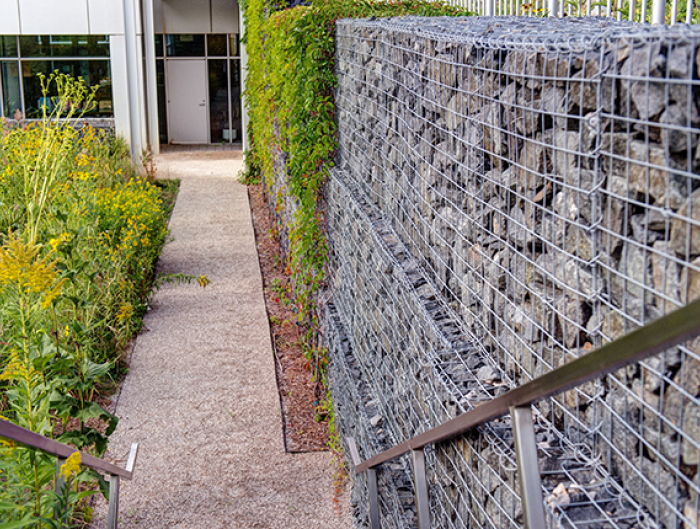 Exterior of The Kresge Foundation - walkway with gabion retaining walls made from blue chip granite