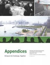 cover_for_appendix_jpg.jpg