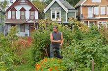 Urban farmer, white male in garden with houses in the background