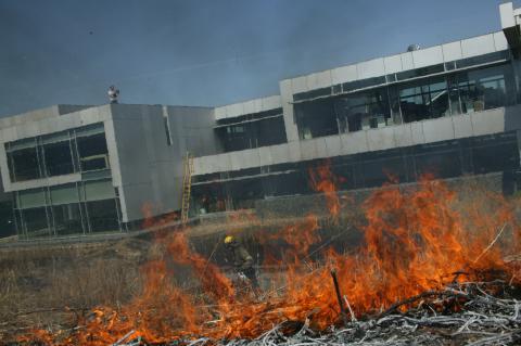 controlled_burn_prairie.jpg